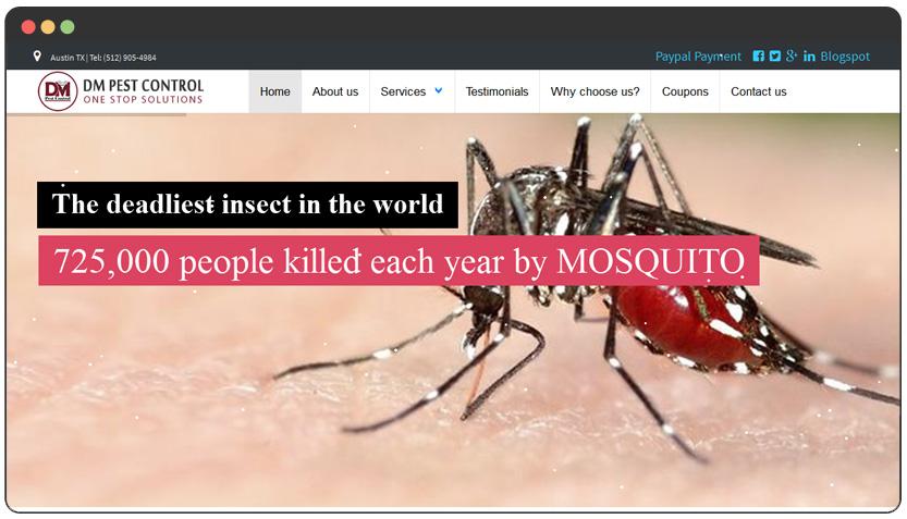 portfolio Pest Control Website