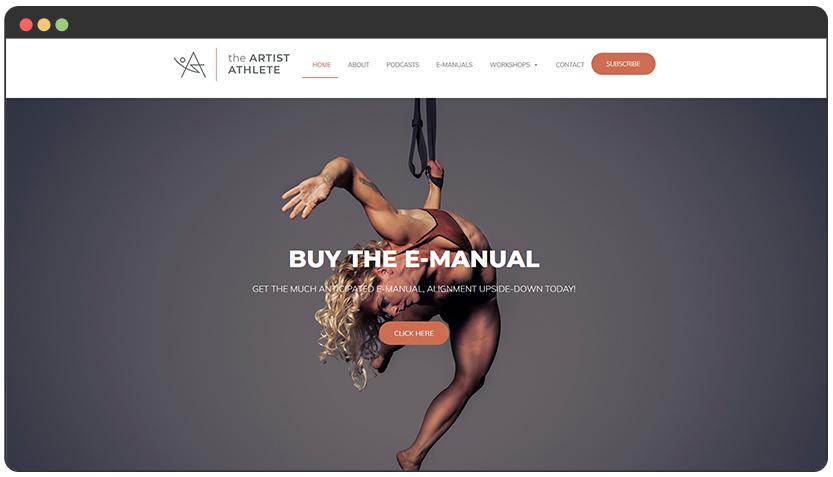 Aerialist Website