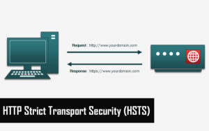 HTTP Strict Transport Security (HSTS)