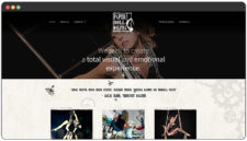 Aerial Theater Productions / Aerial Entertainment
